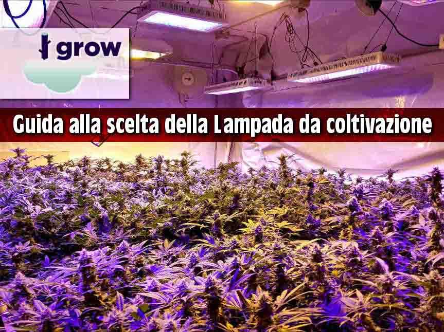 lampade coltivazione indoor