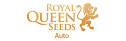Royal Queen Seeds Automatic